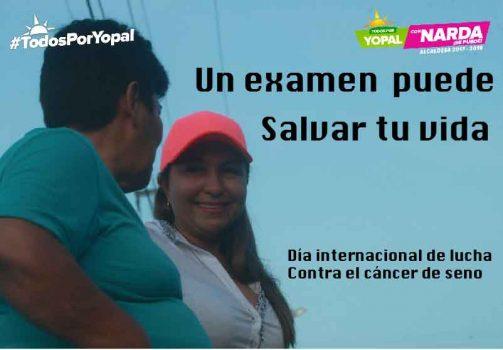 Día de lucha contra el cáncer de seno /
