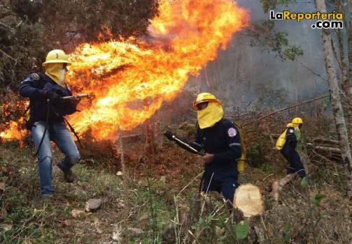 Atención de bomberos en control de incendios forestales.