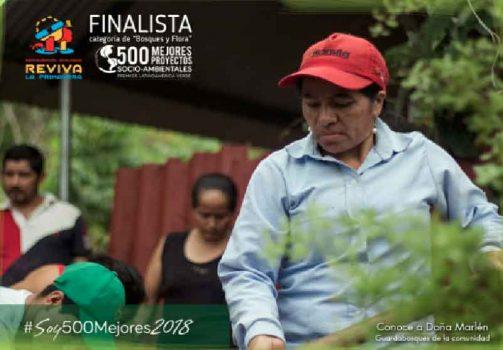 Los finalistas del Premio Latinoamérica Verde.